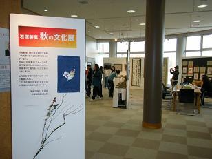 2010文化展