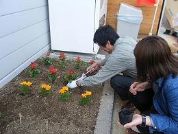 100504花植え②