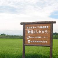 20040805_01.jpg
